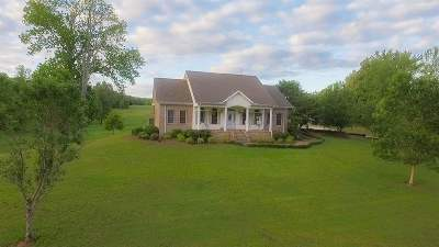 Henry County Single Family Home For Sale: 1248 Jones Bend