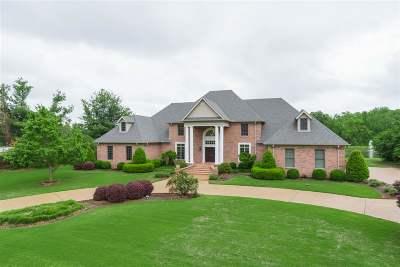 Jackon, Jackson, Jackson Tn, Jakcson Single Family Home For Sale: 8 Willow Green
