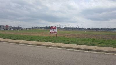 Commercial Lots & Land For Sale: 200 Park Place