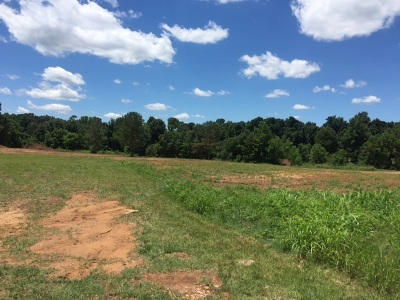 Commercial Lots & Land For Sale: S 1st