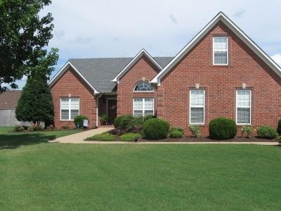 Medina Single Family Home For Sale: 167 Ainsley