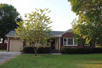 Alamo Single Family Home For Sale: 677 E Church Street