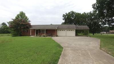Dyer County Single Family Home For Sale: 6867 Highway 104