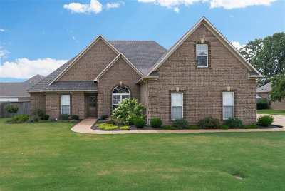Jackson Single Family Home For Sale: 16 Woodwinds