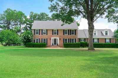 Jackson Single Family Home For Sale: 124 Lakehaven
