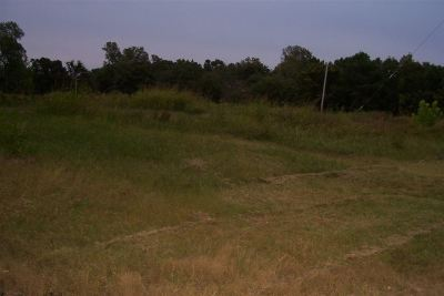 Milan TN Residential Lots & Land For Sale: $60,000