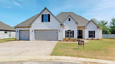 Jackson TN Single Family Home For Sale: $273,900