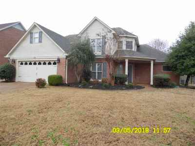 Jackson Single Family Home For Sale: 43 Willow Branch