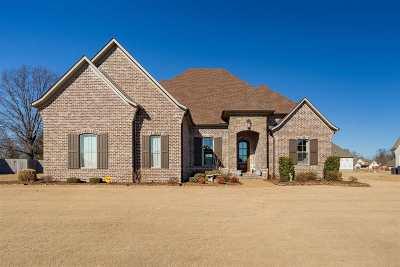 Jackson Single Family Home For Sale: 17 Cheddleton