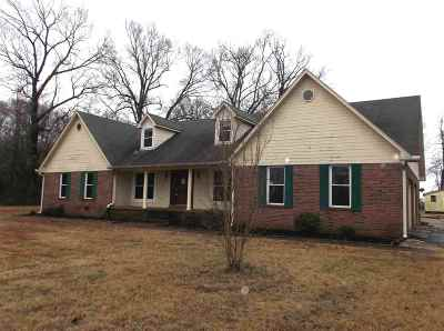 Jackson Single Family Home For Sale: 1197 Lower Brownsville Rd