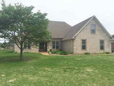 Medina Single Family Home For Sale: 226 Willow Springs Dr