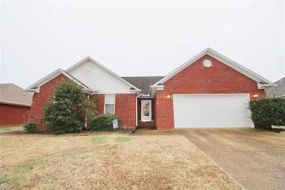 Medina Single Family Home For Sale: 318 Reed Cir