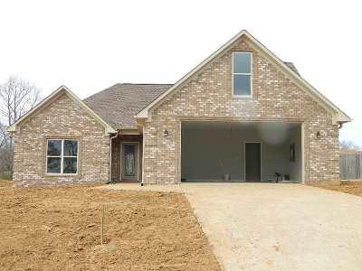 Medina Single Family Home For Sale: 265 Chronicles Drive