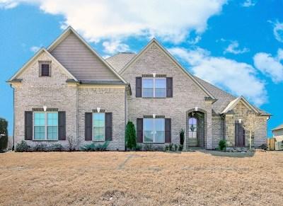 Jackson TN Single Family Home For Sale: $315,000