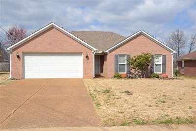Jackson Single Family Home For Sale: 263 Sebastian