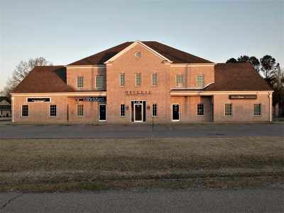 Commercial For Sale: 1190 W Hwy 51 Bypass