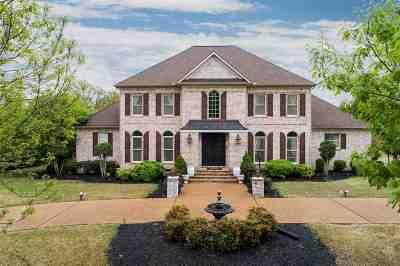 Jackon, Jackson, Jackson Tn, Jakcson Single Family Home For Sale: 8 White Plains