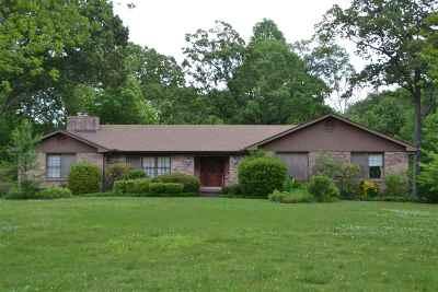 Jackon, Jackson, Jackson Tn, Jakcson Single Family Home For Sale: 108 Fountain Place