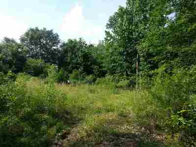 Residential Lots & Land For Sale: 338 Griffin Chapel Street