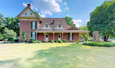 Weakley County Single Family Home For Sale: 767 Pikeview