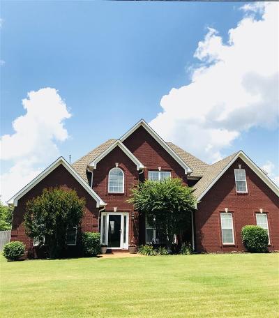 Medina Single Family Home For Sale: 153 Ainsley