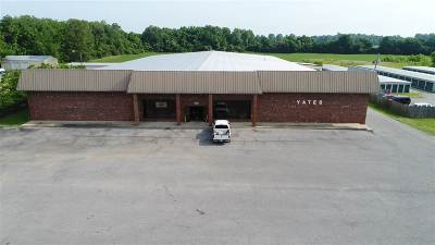 Commercial For Sale: 416 Highway 51 By Pass