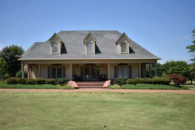 Lake County Single Family Home For Sale: 415 Frierson