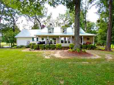 Weakley County Single Family Home For Sale: 358 Young