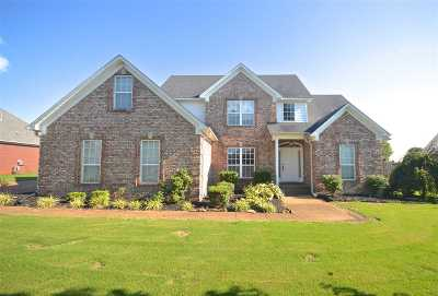 Gibson County Single Family Home For Sale: 120 Conner