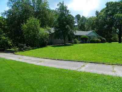 Henderson County Single Family Home For Sale: 428 North Broad Street