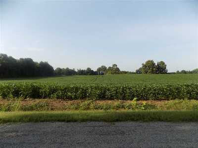 Maury City TN Farm Backup Offers Accepted: $59,900