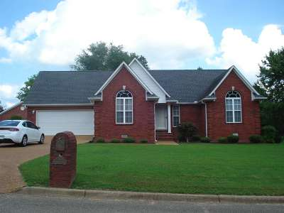 Henderson County Single Family Home For Sale: 141 Ridge Cove