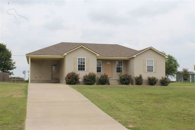 Dyer County Single Family Home For Sale: 1244 Lanes Ferry