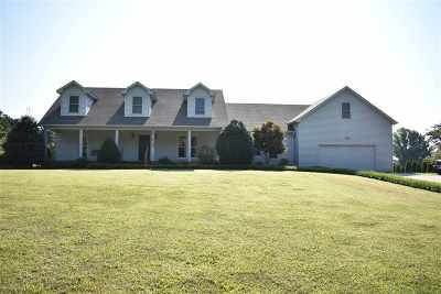 Dyer County Single Family Home For Sale: 3208 Millsfield