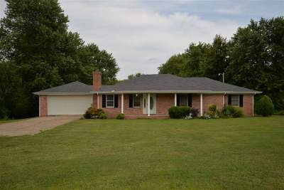 Weakley County Single Family Home For Sale: 12654 N Highway 45e