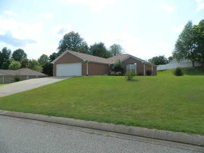 Henderson County Single Family Home Active-Price Change: 204 Plantation Drive