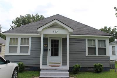 Alamo Single Family Home For Sale: 293 S Johnson Street
