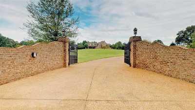 Henderson County Single Family Home For Sale: 1052 Hammlett