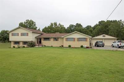 Carroll County Single Family Home For Sale: 495 State Route 77