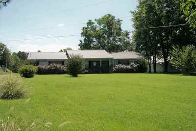 Obion County Single Family Home For Sale: 263 W Highway 22