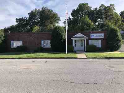 Commercial For Sale: 433 E Parkview St