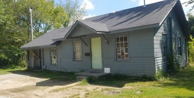 Haywood County Single Family Home For Sale: 718 Cobb