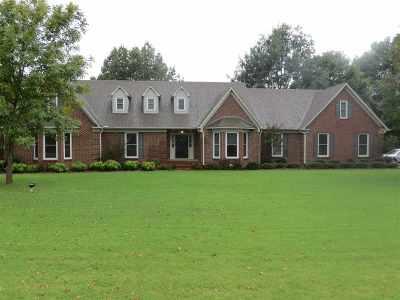 Jackon, Jackson, Jackson Tn, Jakcson Single Family Home Back On Market: 443 Shadow Ridge