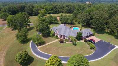 Chester County Single Family Home For Sale: 1295 State Route 22a South