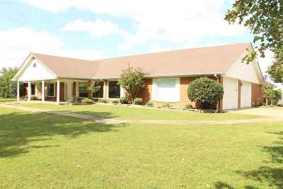 Dyersburg Single Family Home For Sale: 264 Craig