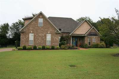 Dyer County Single Family Home For Sale: 356 Oakleigh Drive