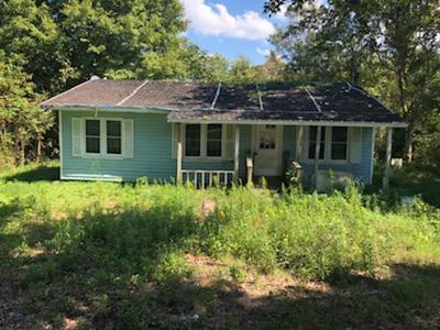 Obion County Single Family Home For Sale: 1328 N Shawtown Rd