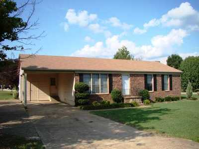 Gibson County Single Family Home For Sale: 205 Bryce