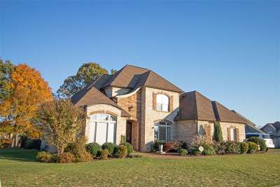 Gibson County Single Family Home For Sale: 379 Silver Leaf Dr