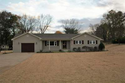 Dyer County Single Family Home For Sale: 3875 E Highway 104